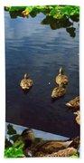 Exotic Birds Of America Ducks In A Pond Bath Towel