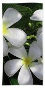 F1 Plumeria Frangipani Flowers Hawaii Bath Towel