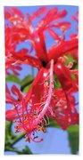 F18 Hawaiian Hibiscus Hand Towel