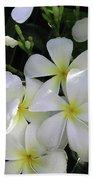 F2 Plumeria Frangipani Flowers Hawaii Bath Towel