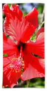 F20 Red Hibiscus Hand Towel
