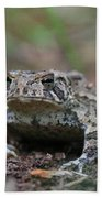 Face To Face With A Fowler Toad  Bath Towel