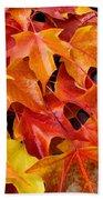 Fall Art Prints Red Orange Yellow Autumn Leaves Baslee Troutman Bath Towel