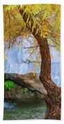 Fall At Murray Falls II Bath Towel