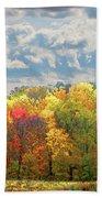 Fall At Shaw Bath Towel by David Coblitz