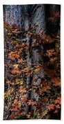 Fall Beauty Bath Towel