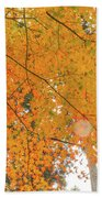 Fall Color Maple Leaves At The Forest In Aichi, Nagoya, Japan Bath Towel