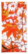 Fall Color Maple Leaves At The Forest In Kumamoto, Japan Bath Towel