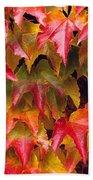 Fall Colored Ivy Bath Towel