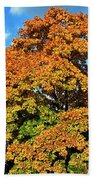 Fall Colors 19 Bath Towel