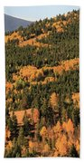 Fall Colors At Rocky Mountain National Park Bath Towel