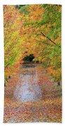 Fall Colors In Oregon Bath Towel