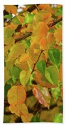 Fall Foliage II Bath Towel