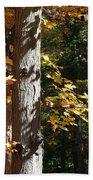 Fall Forest 4 Bath Towel