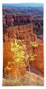 Fall In Bryce Canyon Bath Towel