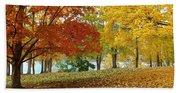 Fall In Kaloya Park 9 Bath Towel