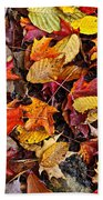 Fall Leaves On Forest Floor Hand Towel