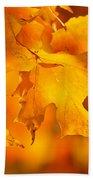 Fall Maple Leaves Bath Towel by Elena Elisseeva