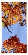 Fall Oak Leaves Up Above Bath Towel