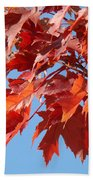Fall Red Orange Leaves Blue Sky Baslee Troutman Bath Towel