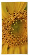 Fall Sunflower Avila, Ca Bath Towel
