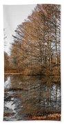 Fall Swamp Bath Towel