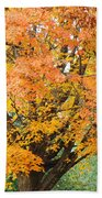 Fall Tree Art Print Autumn Leaves Bath Towel