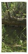 Fallen Tree In Peters Canyon Bath Towel