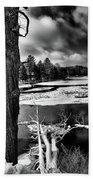 Fallen Trees In The Moose River Bath Towel