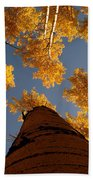 Falling Sky Bath Towel
