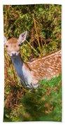 Fallow Deer 2 Bath Towel