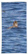 Family Geese Bath Towel