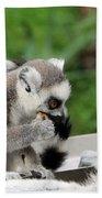 Family Of Lemurs Bath Towel