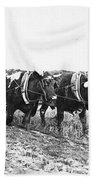 Farming: Ploughing, C1930 Bath Towel