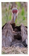 Feather Bed Hand Towel