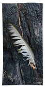 Feather In Burnt Tree Bath Towel