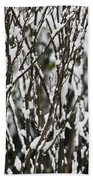 Female Cardinal In The Snow Hand Towel