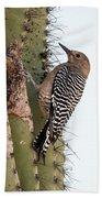 Female Gila Woodpecker-img__2691-2016 Hand Towel
