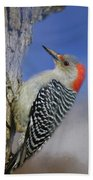 Female Red-bellied Woodpecker Bath Towel