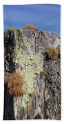 Fence Post Encrusted With Lichen  Bath Towel