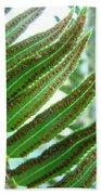 Fern Art Print Green Forest Ferns Baslee Troutman Bath Towel