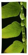 Fern Close-up Nature Patterns Bath Towel
