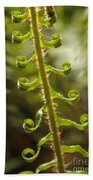 Fern Frond Bath Towel