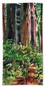 Ferns And Redwoods Bath Towel