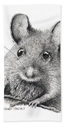 Field Mouse Or Meadow Vole Hand Towel