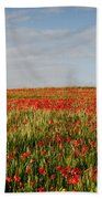Field Of Red Poppy Anemones Late In Spring  Bath Towel