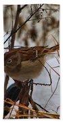 Field Sparrow Bath Towel
