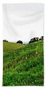 Fields In Glastonbury Bath Towel