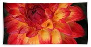 Fiery Red And Yellow Dahlia Bath Towel