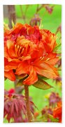 Fine Art Floral Art Prints Canvas Orange Rhodies Baslee Troutman Bath Towel
